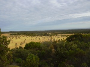 View from the Pinnacles Lookout